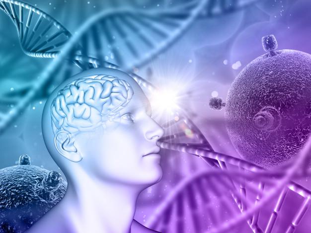 Cara Meningkatkan Kemampuan Otak, Memori, dan Motivasi