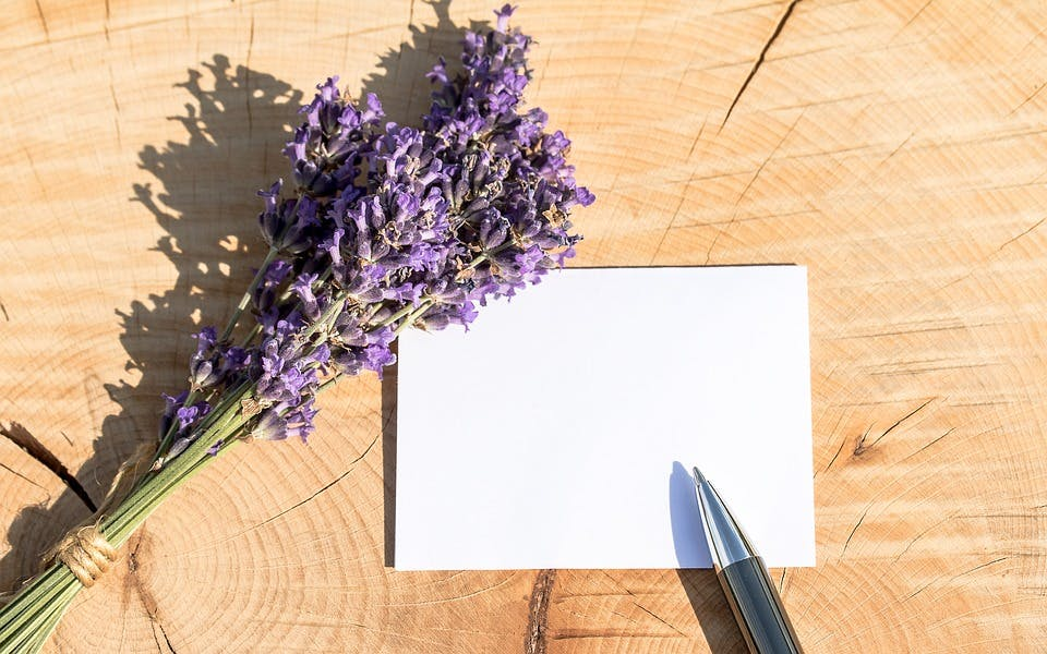 STUDILMU Career Advice - 5 Cara Menanamkan Rasa Terima Kasih